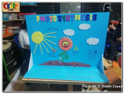 Photosynthesis (650)