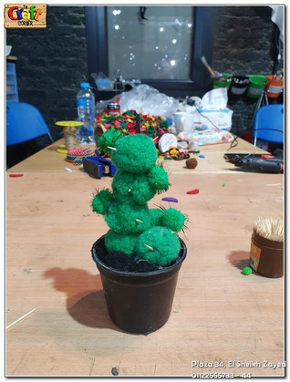 cactus project (1157)