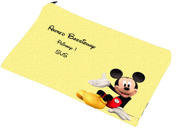 mickey pencil case