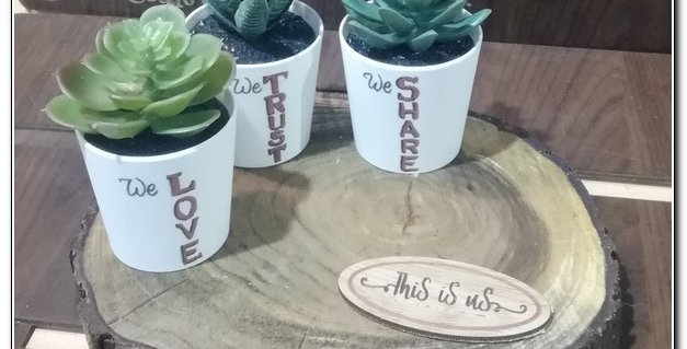 This is us tree log plant pots