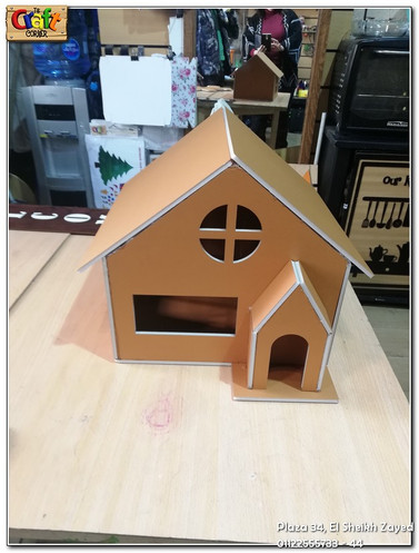 Cardboard house (678)