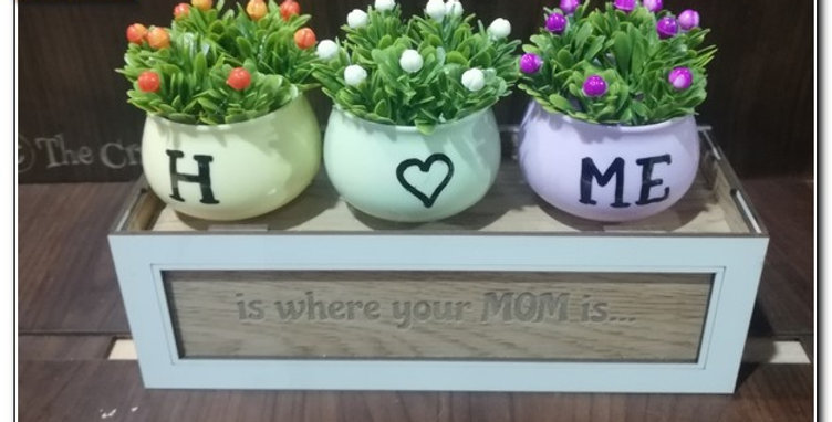 Wooden box with plant pots (personalized)