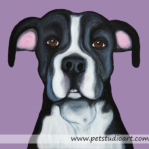 Custom 12in x 12in Pet Painting