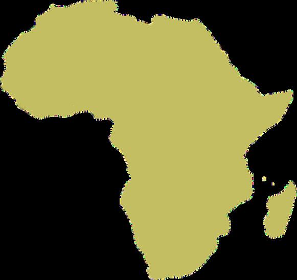 InMyView Africa
