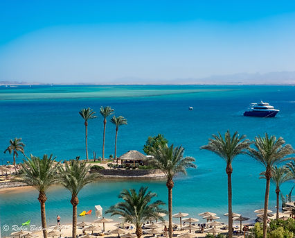 Hurghada, Red Sea ©Robin Bateman 2019.jp