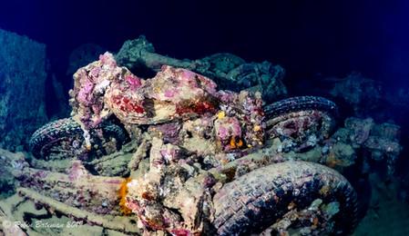 Thistlegorm Red Sea.jpg