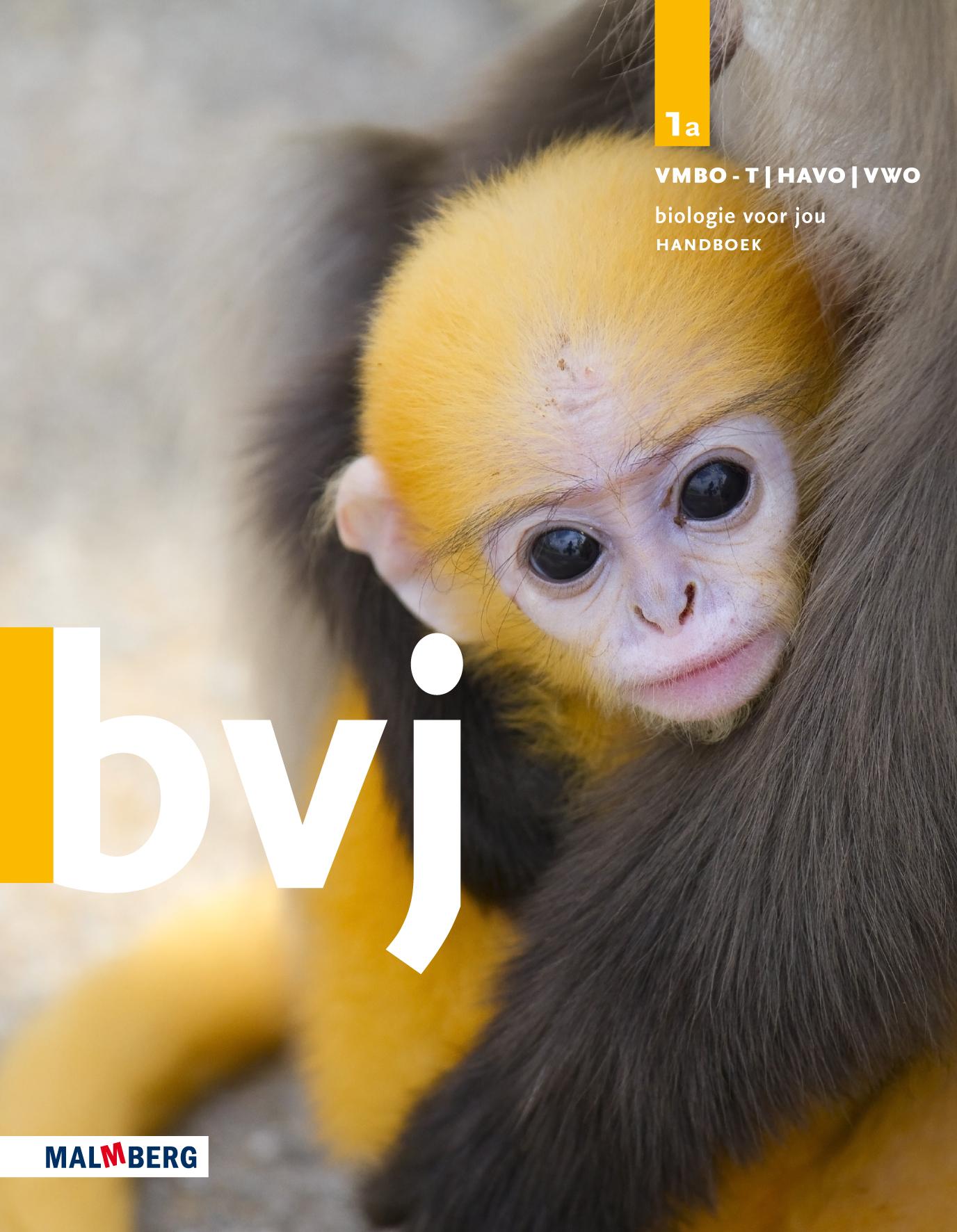 BVJ_Omslag_lj1_M.de.Wild.jpg
