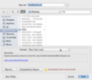 W2-WordSaveAsPlainText.png