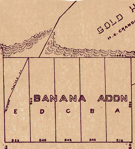 Banana Addition
