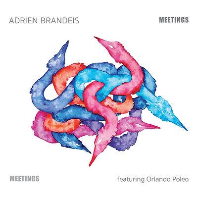 ADRIEN BRANDEIS facing3000x3000.jpg