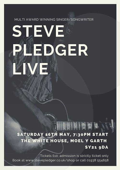 Steve Pledger live (1).jpg
