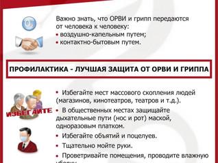 Профилактика гриппа и острых респираторных вирусных инфекций (ОРВИ)