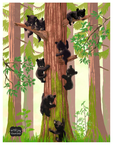 bear cubs in sequoia