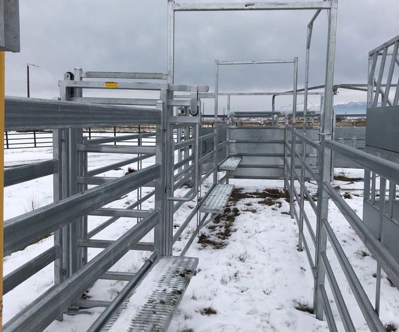 Cattle Alley Bow, Cattle Walkway