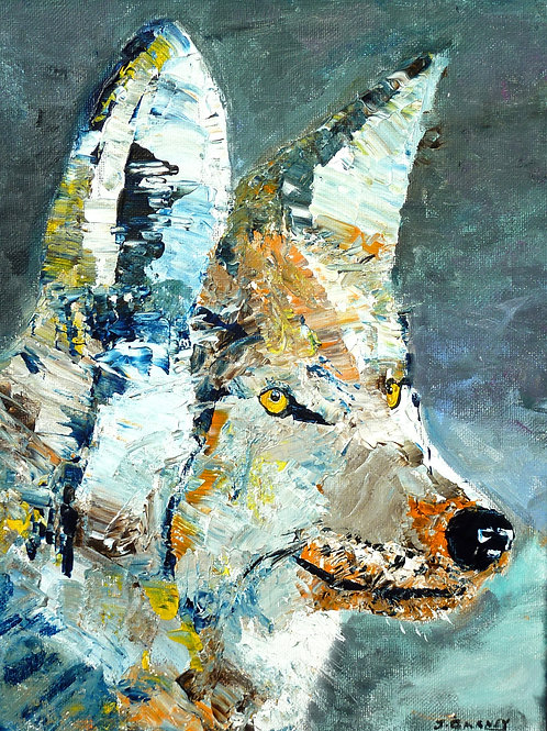 """"""" Coyote 2""""  Limited Edition, Signed, 11x14 Print. FREE Shippi"""