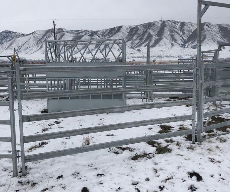 Premium 5 Rail Panel & Gate