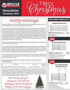 2020- 12 Newsletter-1.jpg