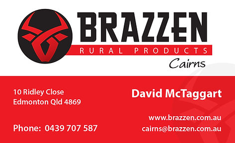 Brazzen Business Cards-1.jpg