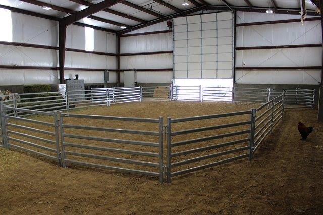Sheep Premium 6 Rail Panel