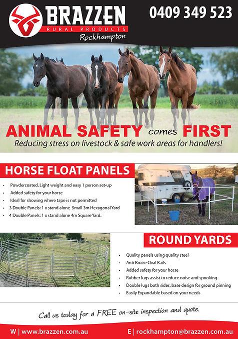 Rockhampton Horse Flyer.jpg