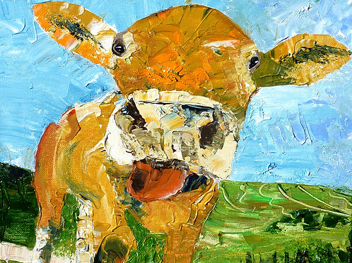 """Cow""  Limited Edition, Signed, 11x14 Print. FREE Shippi"