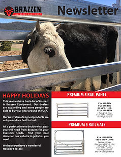 Brazzen Holiday Cattle Newsletter-1.jpg