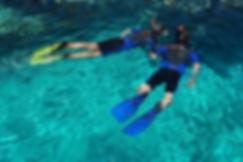 cr snorkel.jpg