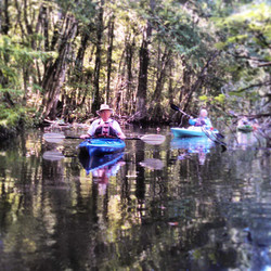 Kayak up a creek