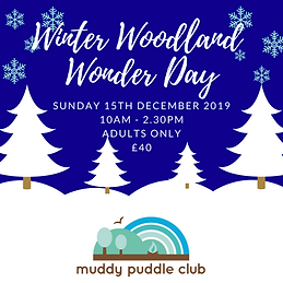 Winter Woodland Wonder Day 2019.png