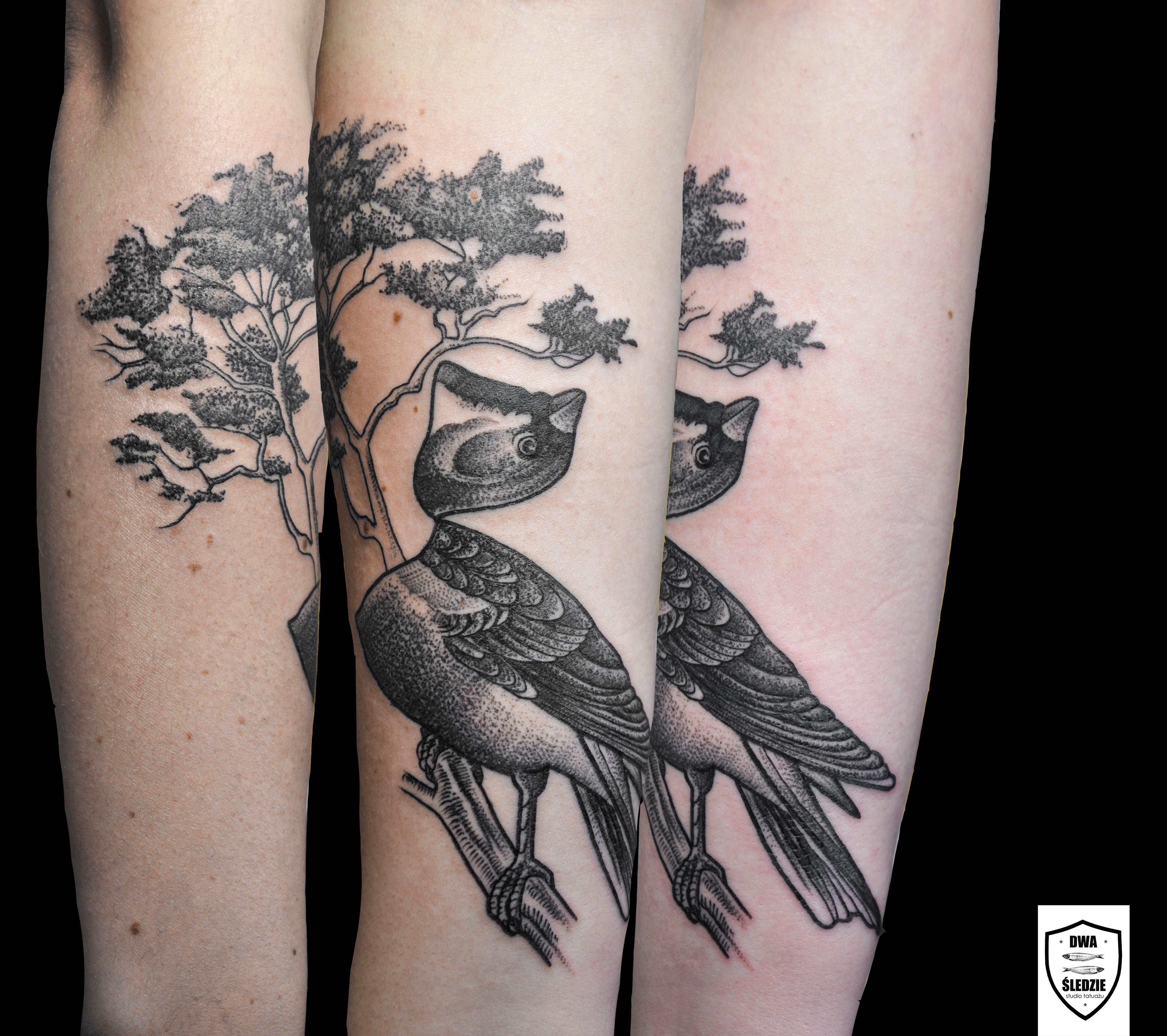 tatuaż ptak
