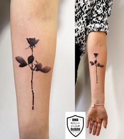 róża Depeche Mode