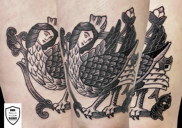 tatuaż harpia