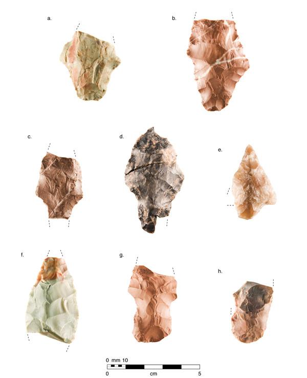 Figure-Chronology_v3.jpg