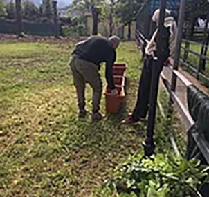 1 giardinaggio san francesco copia.png