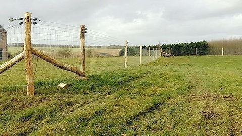 clôture pour moutons
