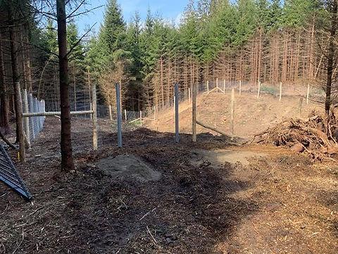 clôture pour gibiers