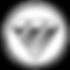 Foton-logo-[1].png