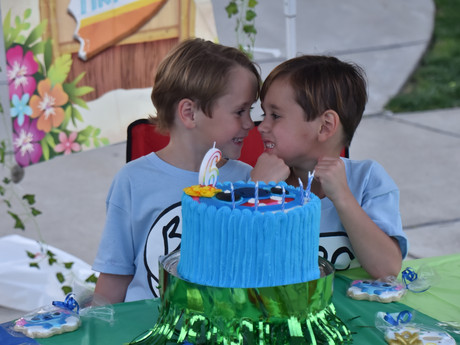 Twins, 6, Have Safe Curbside Drive-By Birthday