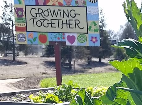 Ripon Kids' Garden Club Changes Name to Oak Valley Youth Garden