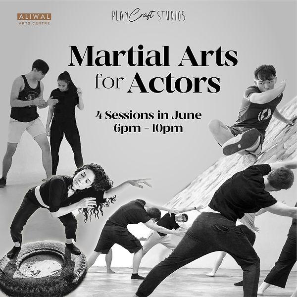 Martial Arts for Actors_01martial arts actors_for web.jpg