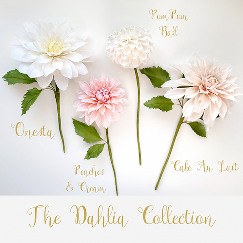 The Dahlia Collection Online Class