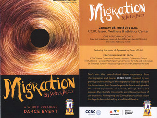 FREE Performance: Migration by Peter Pucci at CCBC Essex