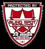 Blind Spot Serveillance_Logo.png
