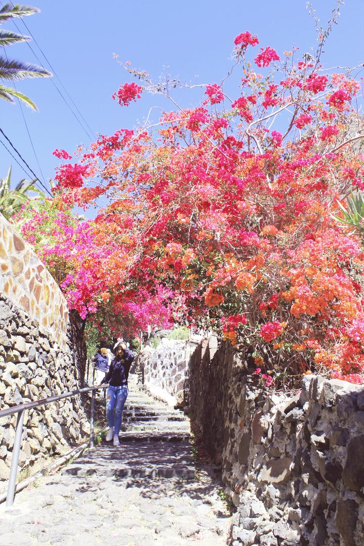 Masca, Canary Islands.