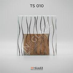 TS-010.jpg