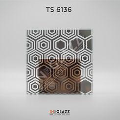 TS-6136.jpg