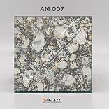 AM-007.jpg
