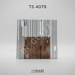 TS-4079.jpg