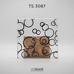 TS-3087.jpg