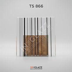 TS-866.jpg